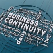 Continuitatea Afacerii